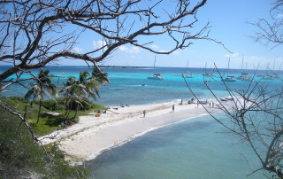 Sailing cruises caraibi in catamarano